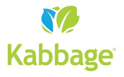 Kabbage Clone Script