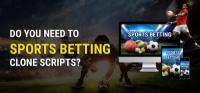 Sports Betting Clone Scripts
